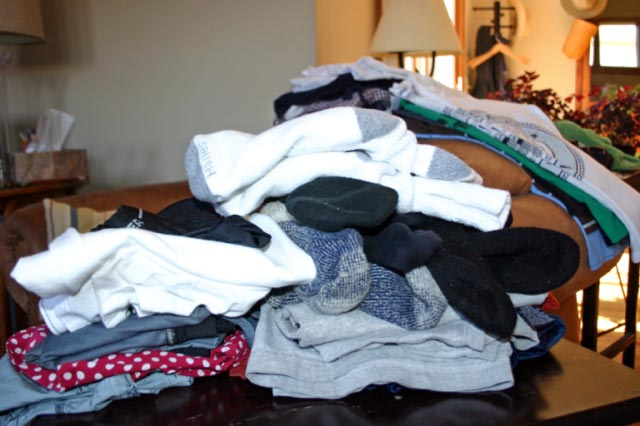 Clean, Folded, GOOD SMELLING laundry!