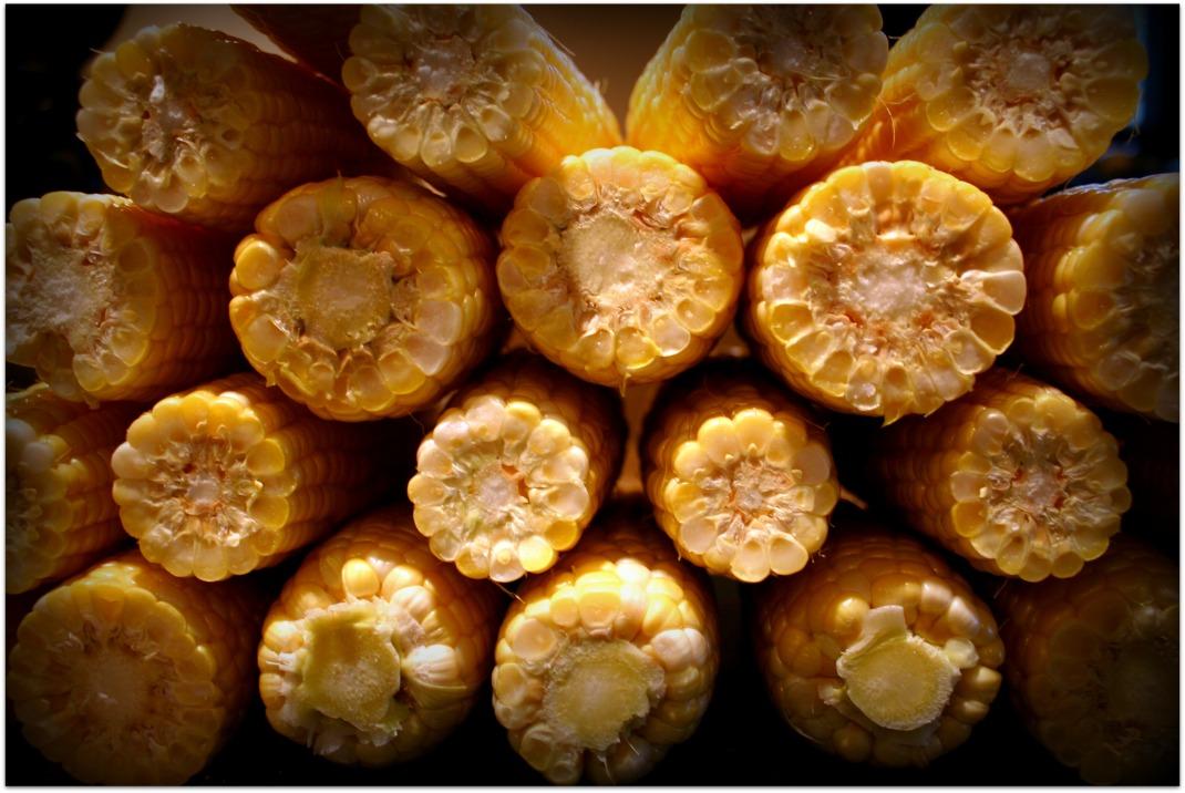 cornstack