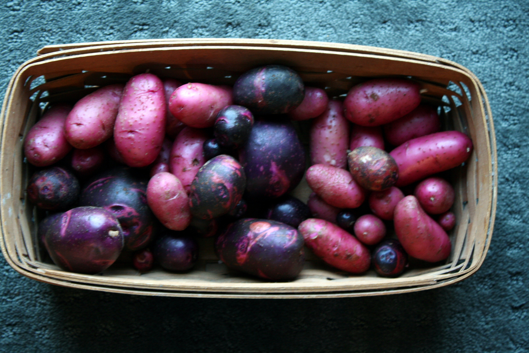 Purple Viking & Red Thumb Potatoes